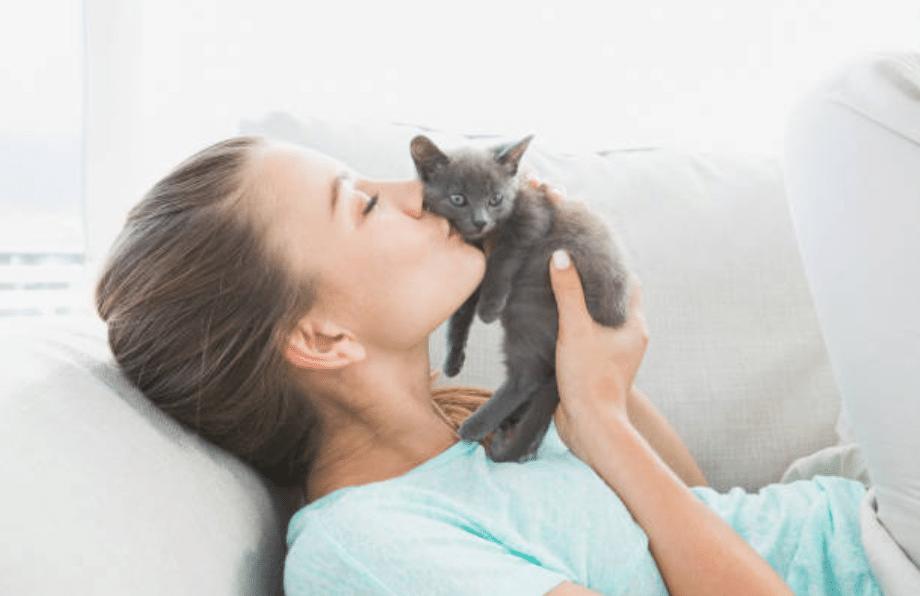 chaton femme câlin bisou