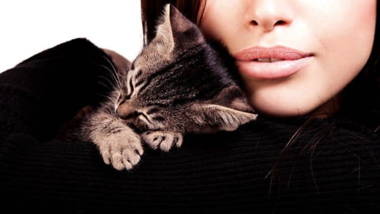 femme chaton câlin