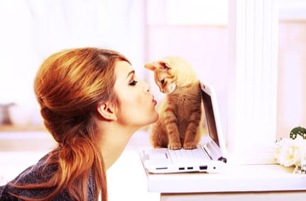 chaton câlin femme ordinateur