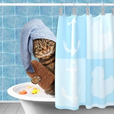 chat bain lave