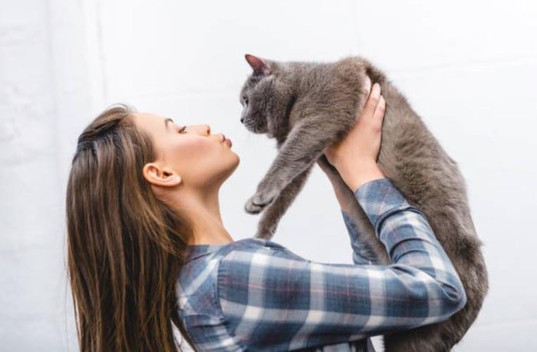 celibataire avec un chat